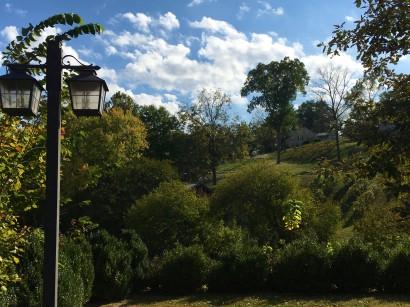 hermann-hillside