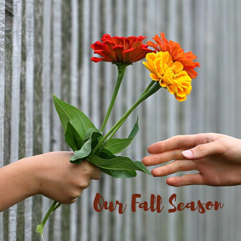 Our Fall Season