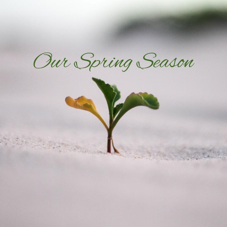 Our Spring Season